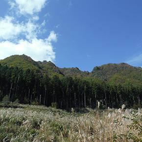 古光山(こごうやま)