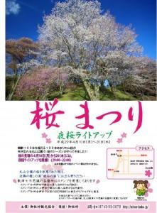 丸山公園(山桜)6